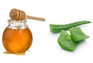 Алоэ с мёдом приготовления лекарства в домашних условиях. Алое и мед для желудка, глаз и легких