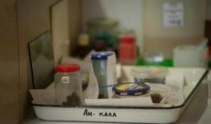 Анализ на дисбактериоз: расшифровка у взрослых и детей. Клостридии, энтерококки, бактероиды в анализе - что это значит?