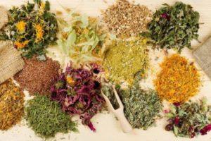 Сборы трав при лечении гастродуоденита