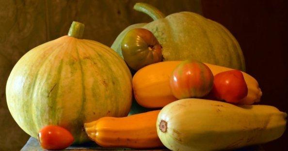 Овощи – тыква, помидоры, кабачки