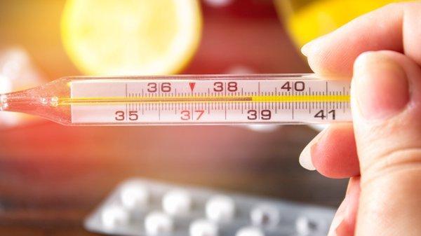 Трихинеллез у взрослых: причины, первые признаки и лечение