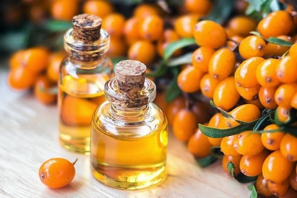 Применение облепихового масла при язве желудка