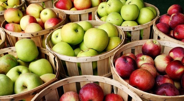 Правила употребления яблок при панкреатите
