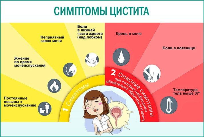 Самые частые симптомы цистита