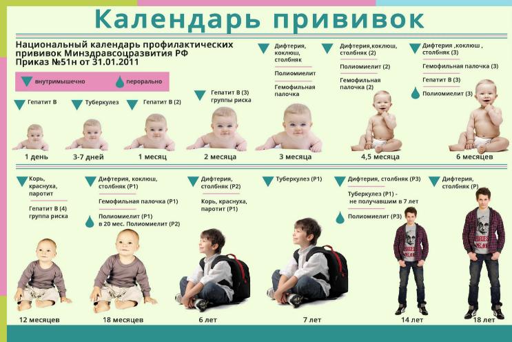 Календарь вакцинации